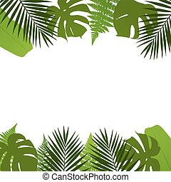Tropical leaves background with palm,fern,monstera and...