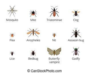Insect parasites vector Bug Insect parasites Set isolated on...