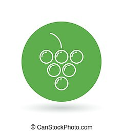 Grapes icon. Grape cluster sign. fruit symbol. Vector illustration.