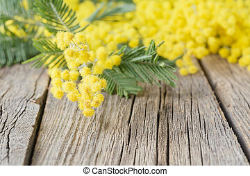 Yellow Mimosa bouquet on a rustic wood table