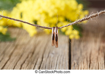 Mimosa flowers branch on wooden background, Weddig...