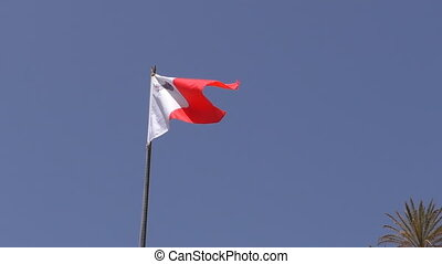 Malta flag and palm tree top - National red and white colour...