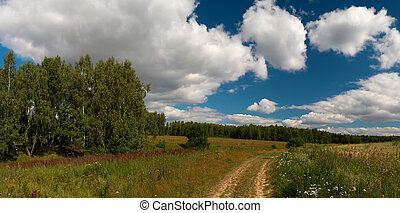 Summer scene - Summer landscape with beautiful cloudscape....