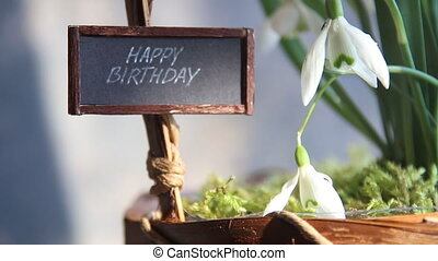 happy birthday text and snowdrops - Happy birthday idea...
