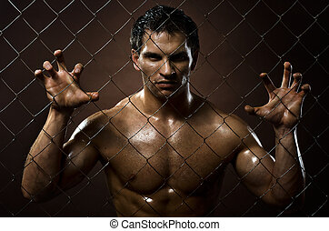felon man - the very muscular handsome felon guy , out of...
