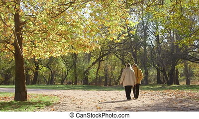 Two older women walking along the autumn park alley talking...