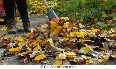 Woman with a broom sweeping heap of fallen yellow leaves on...