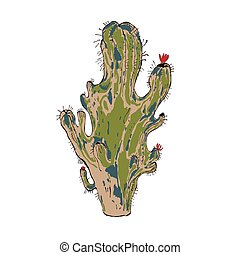 Vector illustration of cactus isolated object, design web...