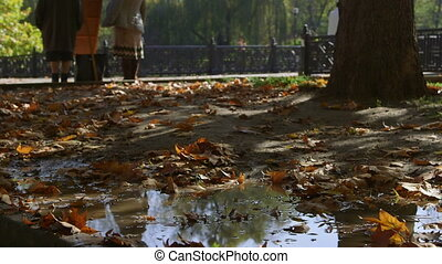 Puddle with fallen autumn leaves in a city park people...