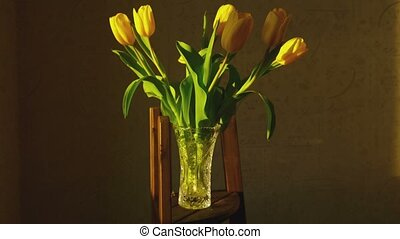 Withering yellow tulips - Yellow tulips fade in bright...