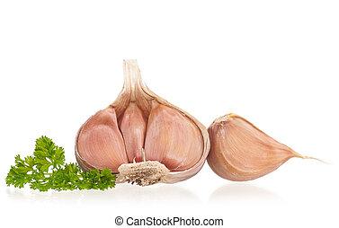 Young garlic bulb - Garlic bulb with fresh parsley on white...
