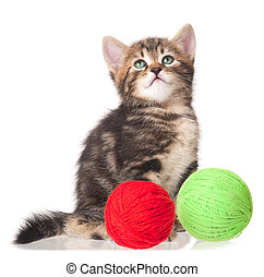 Cute little kitten with balls of color threads on white...