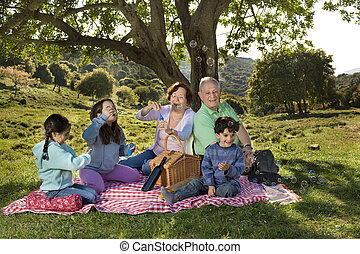 grandparents grandchild picnic - grandparents and...