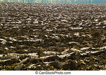 plowed field of a farmer - the freshly picked field of a...