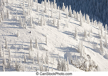 Snow Covered Mountainside - Single skier on a snow covered...