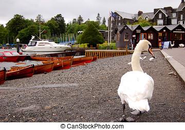 Uk Lake District - uk lake district