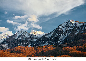 Mountain in the snow with orange trees and a blue sky