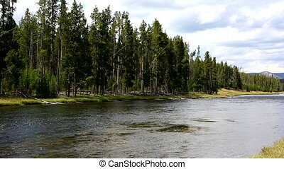 Firehole River Yellowstone National - Firehole River flowing...