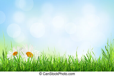 Abstract sunny spring background