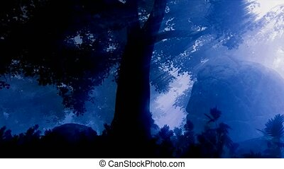 dark forest landscape at night