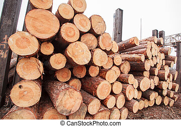 wood sawmill log crane timber
