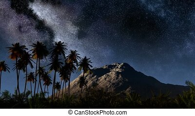 Colorful milky way and tropical landscape with palms...