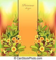 Orange yellow primroses - Spring summer flowers. Floral...