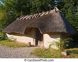 Viking age house