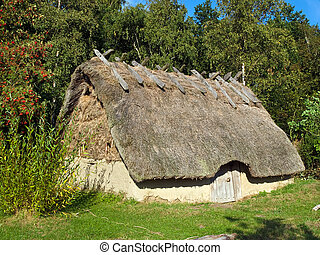 Viking age house in a village