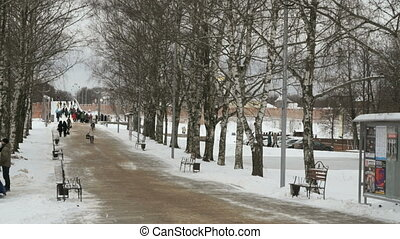 Alley in the Park. People are walking. Winter - Birch Alley...