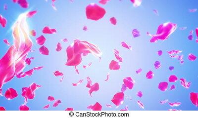 Rose Petals Falling (Loop)