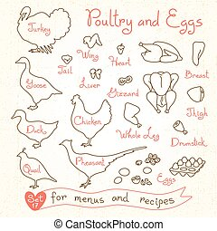 Set drawings of poultry and egg for design menus, recipes....