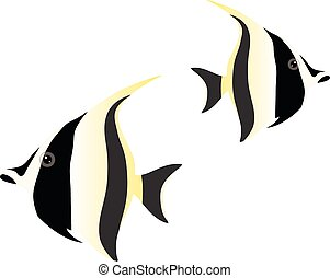 moorish idol isolated on white background.