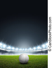 Generic Floodlit Stadium With Cricket Ball - A generic...