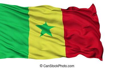 Isolated Waving National Flag of Senegal