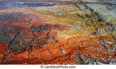 Yellowstone Bacteria Mat - Bacteria mat at West Thumb Geyser...