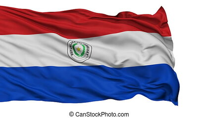Isolated Waving National Flag of Paraguay