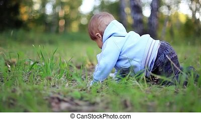 Little baby boy crawling at the sunny park. 1920x1080