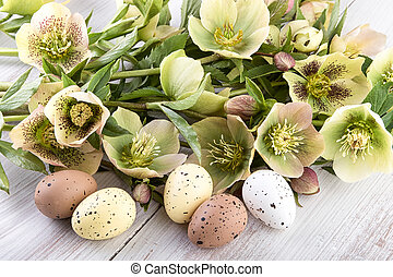 Easter decoration eggs pastel colors flowers - Easter...