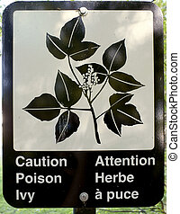 Caution Poison Ivy Sign - A sign in a public park warning of...