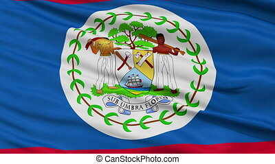 Close Up Waving National Flag of Belize - Belize Flag Close...