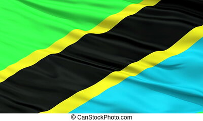 Close Up Waving National Flag of Tanzania - Tanzania Flag...