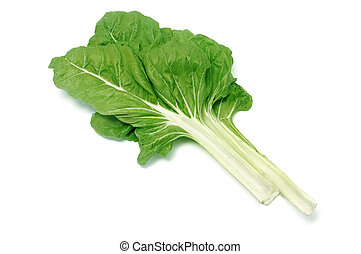 chard leaves isolated on a white background