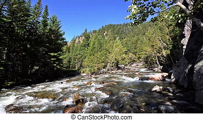 South Piney Canyon - South Piney Creek passing through South...