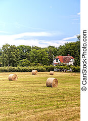 Farmland in Sweden - A typical countryside view of swedish...