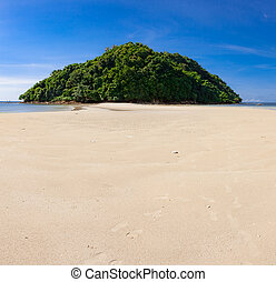 Tropical forest at the end of paradise sand beach at day