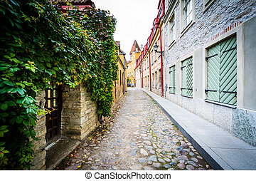 A narrow cobblestone street, in the Old Town of Tallinn, Estonia.