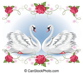 White swans with floral roses ornament - Elegant two white...