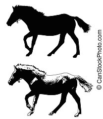 horse silhouette and illustration