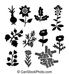 Decorative plants set - Deocorative black and white plants...